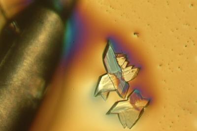 Kristalle auf hellem Grund