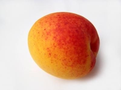 Aprikose liegend