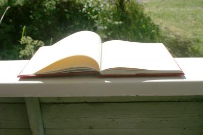 aufgeschlagenes Buch 1