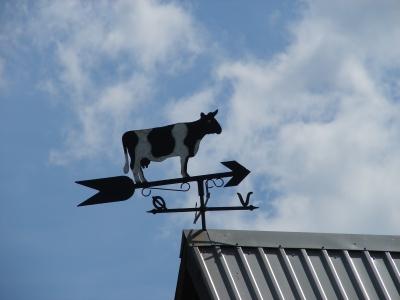 Wetterhahn/Wetterkuh