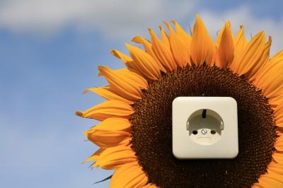 umweltbewusster Energiehunger