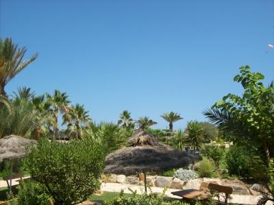 Urlaubsparadies Tunesien