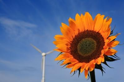 Sonne und Wind_2