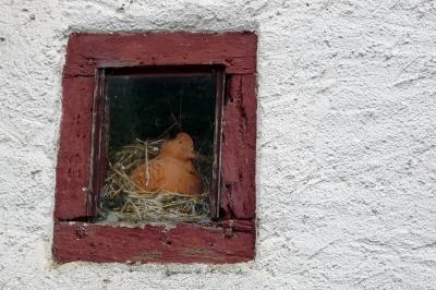 Das Hennen Fenster im Hof