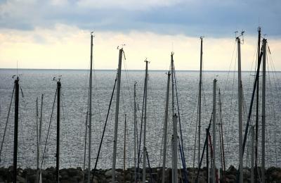 Segelmasten im Hafen