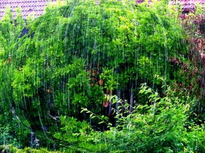 erfrischender Sommerregen in 3D