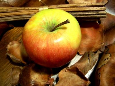 Apfel + Deko 2