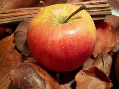 Apfel + Deko 3