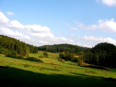 Landschaft der fränkischen-schweiz bei Bärnfels