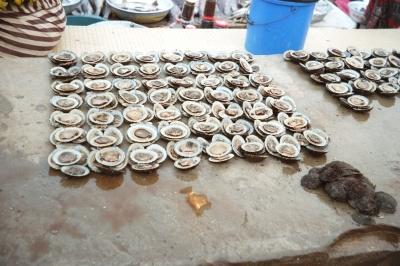 Muscheln auf dem Fischmarkt in Dakar