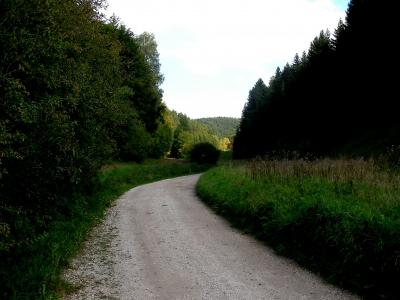 Kräuterweg bei Bärnfels