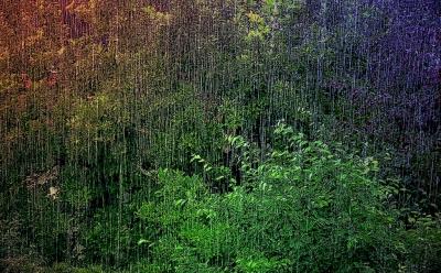 Sommerregen in Heßdorf