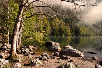 Herbst am Obersee Bild 1