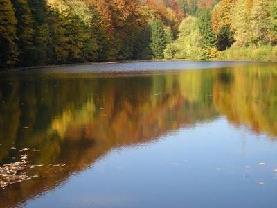 Herbstruhe 1