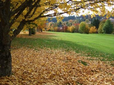 Herbstliches Szenario