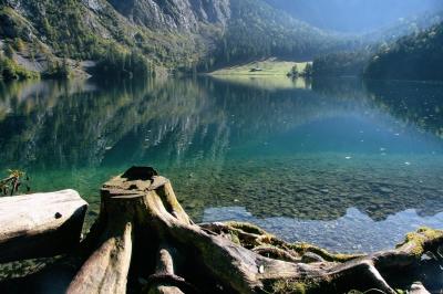 Herbst am Obersee Bild 2