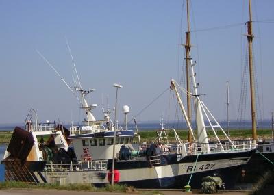 Fischkutter im Hafen von Hvide Sande/Dänemark