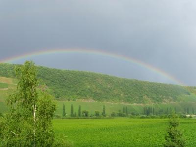 Regenbogen über Köwerich