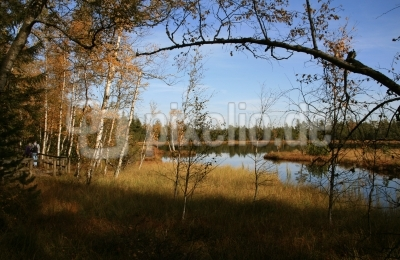 Herbst im Naturschutzgebiet