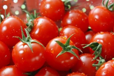 Tomate 1 (3000 x 2008 pixel)