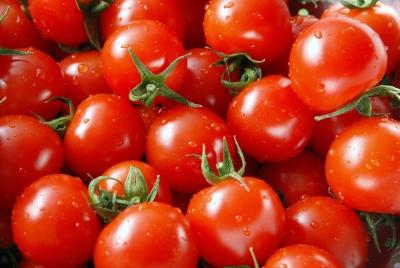 Tomaten (2993 x 2008 pixel)