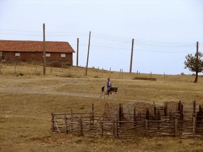 Landleben abseits