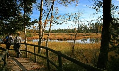 Hochmoor am Wildsee mit Besucher-Steg und Personen