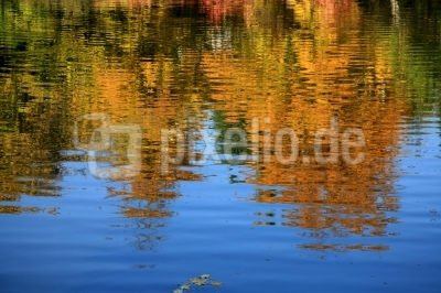 Herbst-Farbverlauf im Wasser