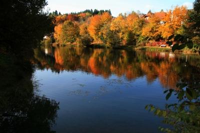 Herbst-See in Licht und Schatten_2