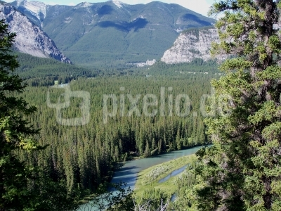 Am Bow River bei Banff