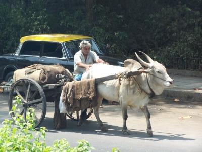 Transport in Bombay