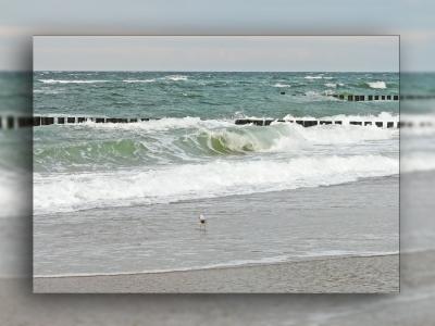 Sommer an der Ostsee 3