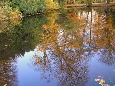 Herbstbild Schöntalsee Aschaffenburg