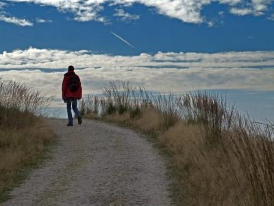 Wanderer auf dem Westweg (5. Etappe)
