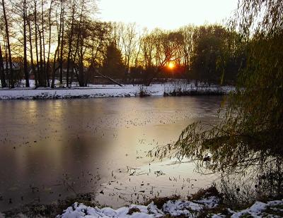 Abendstimmung am winterlichen Teich 2