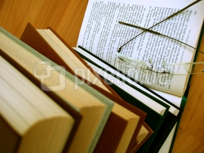 Bücherwurm_1
