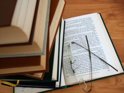 Bücherwurm_3