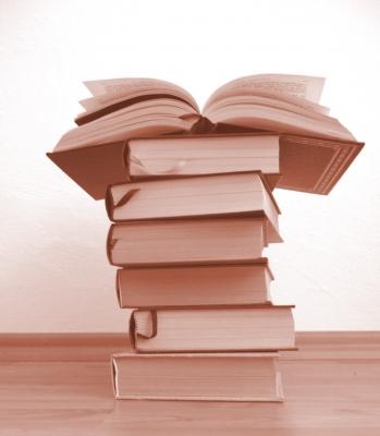 Bücherwurm_2