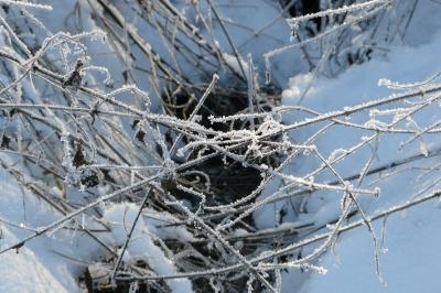 verschneiter Bachlauf #2