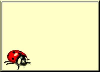 Hintergrund Käfer 02