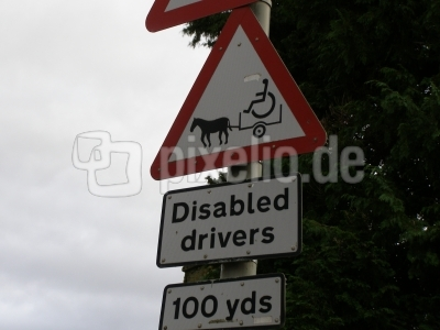 Disabled Drivers