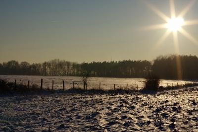 Winter im Broichbachtal 09