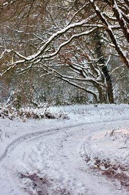 Winter im Broichbachtal 12