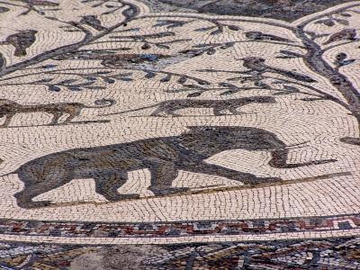 Röm. Mosaik in Marokko
