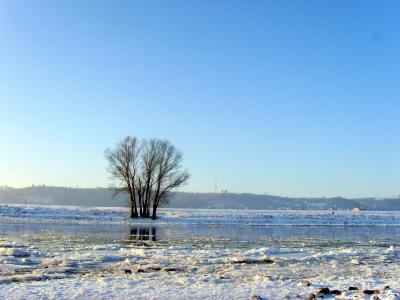 Elbe Wintermorgen 2009 - Minus 21 Grad
