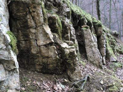 Falkensteiner Höhle 7