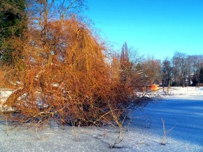 Winterzauber-3