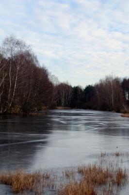 Gefrorener See. Winterlandschaft.