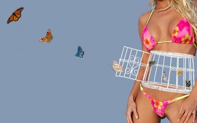 Schmetterlinge im Bauch