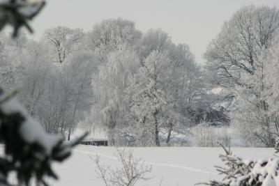 Zauberhafter Wintertag